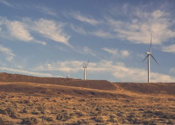 Egypt to Reach Renewable Energy Targets through Corporate PPAs